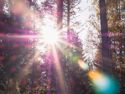 Qual è la differenza tra trasmissione, riflessione e assorbimento solare ?