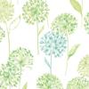 Allium<br/>Verde