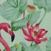 Flamingo</br>Celadon